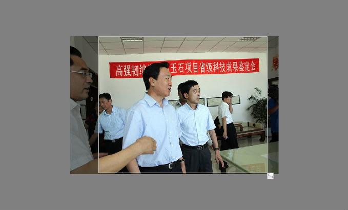 中共辽宁省委副书记夏德仁参观公司展品